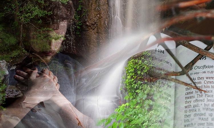 vision at oak grove mennonite church